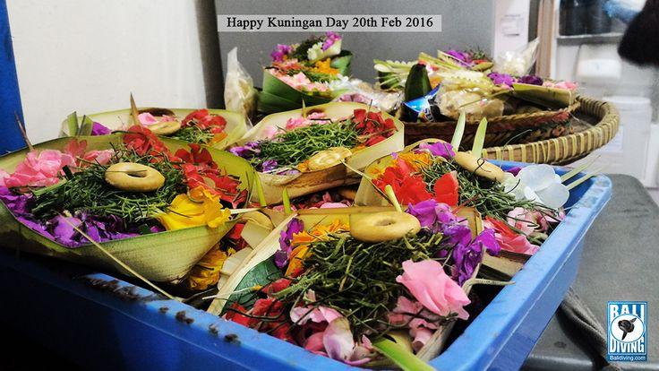 Rahajeng rahinan Kuningan.  Tumpek Kuningan takes place 10 days after Galungan Day, at the Saturday of Kuningan, the 12th week of the Balinese Pawukon calendar. Tumpek Kuningan is the day when the Gods and Pitara return to the earth to bestow physical and spiritual prosperity on humanity, and to bless all beings of the universe.  #balidivingteam #happykuninganday  #tumpekkuningan #balineseculture #theholyceremony #bali #indonesia www.balidiving.com