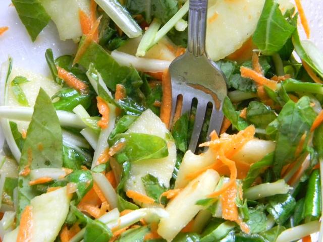 Bok Choy slaw with lemon ginger dressing | Salads & Dressings | Pinte ...