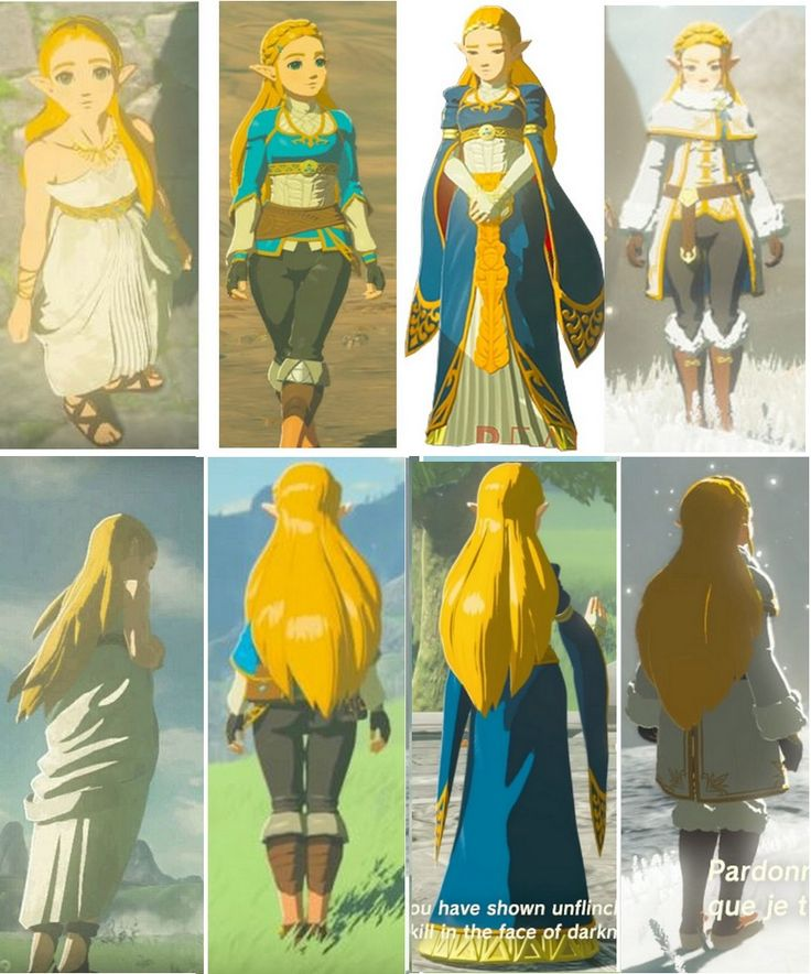 Princess Zelda Breath of The Wild all costumes