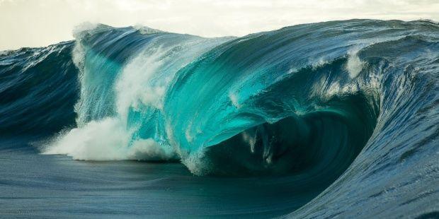 """Nace """"Oceanic x Ibiza"""", un festival que mezcla ciencia, cultura y medio ambiente a favor de los océanos"""