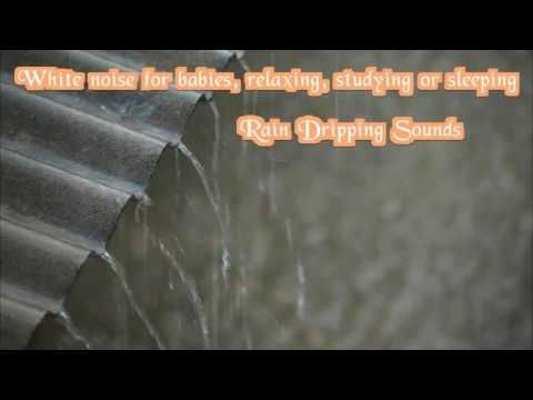 White noise rain dripping sounds for sleeping or studying - YouTube