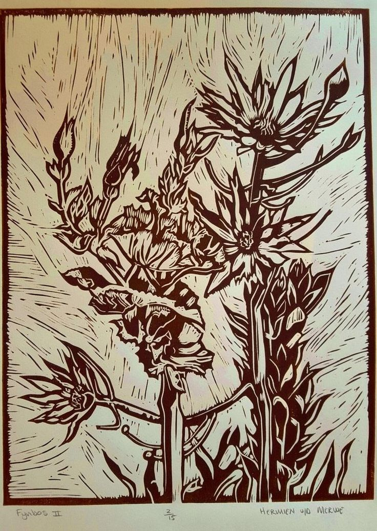 """Fynbos II Lino (Brown): In my Lino art, I purposefully focused my attention on the Fynbos species that usually take the backseat to the King Protea and other obvious showpieces. I discovered the intricate beauty in the lines and shapes and textures of the Leucadendrons and seed pods of the Fynbos biosphere.  I was reminded of God's perspective on the so-called """"least of them"""" - how He lovingly lifts every one of His children up as Royalty."""