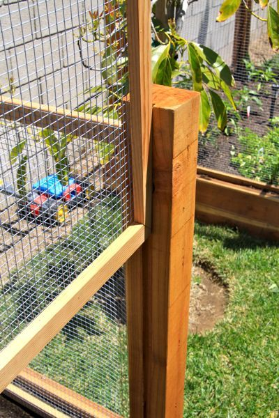removeable raised bed fences i would kill to either have these made for me or