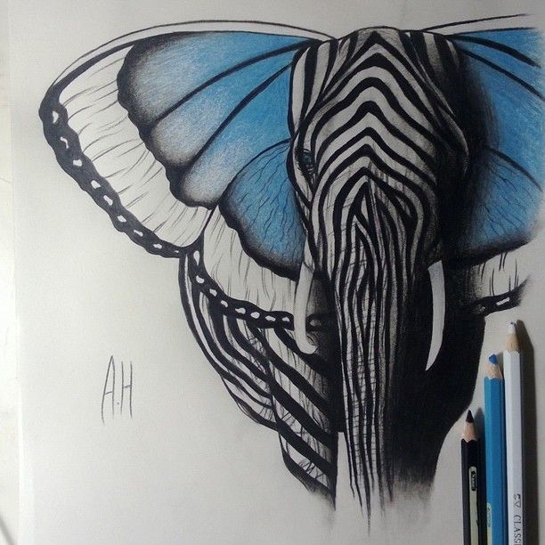 Drawing by @Maureen Mills Mitchell Ali Ashour Hermez  Elephant + Butterfly + Zebra