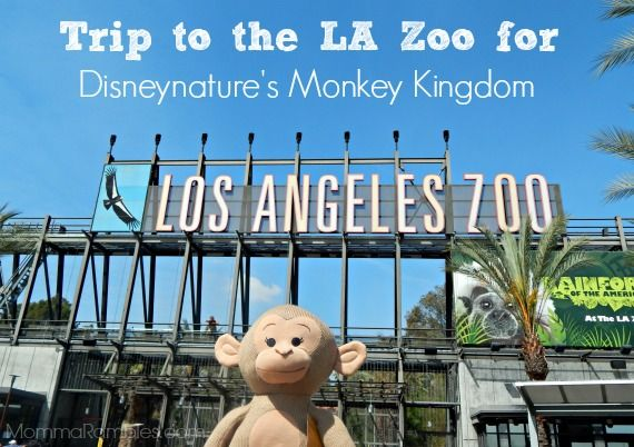 Trip to the LA Zoo for Disneynature's Monkey Kingdom! ~ #MonkeyKingdom #LAZoo - Maryland Momma's Rambles and Reviews