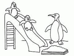 pingvin rajz - Google keresés