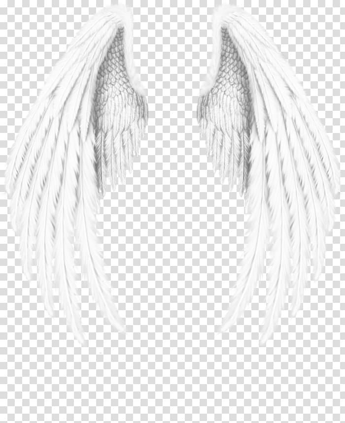 Angel Wings Png Clipart : angel, wings, clipart, Angel, Wings, Transparent, Background, Clipart, Photography,, Drawing