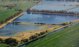 Friedrichsmoor, een viskwekerij. http://www.cruydthof.nl/blog/middeleeuwse-vistechniek-in-hedendaags-duitsland/