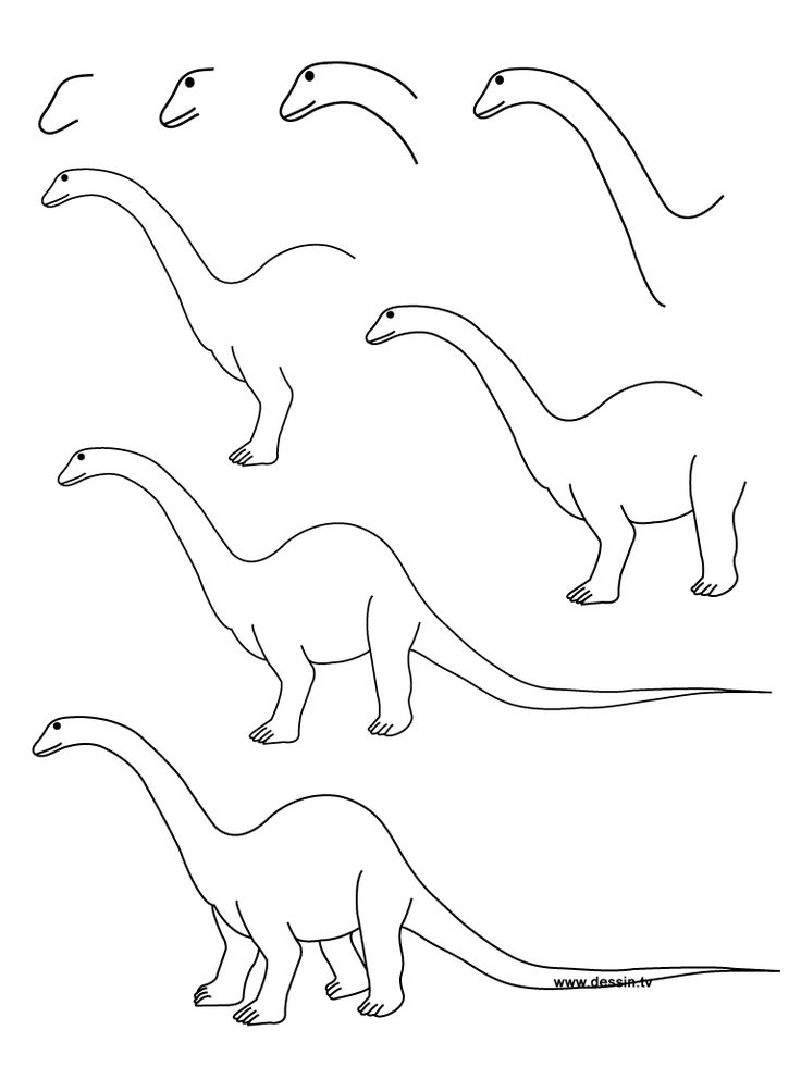 How to draw a dinosaur step by step learn how to draw a diplodocus with simple step by step - Dessin de diplodocus ...