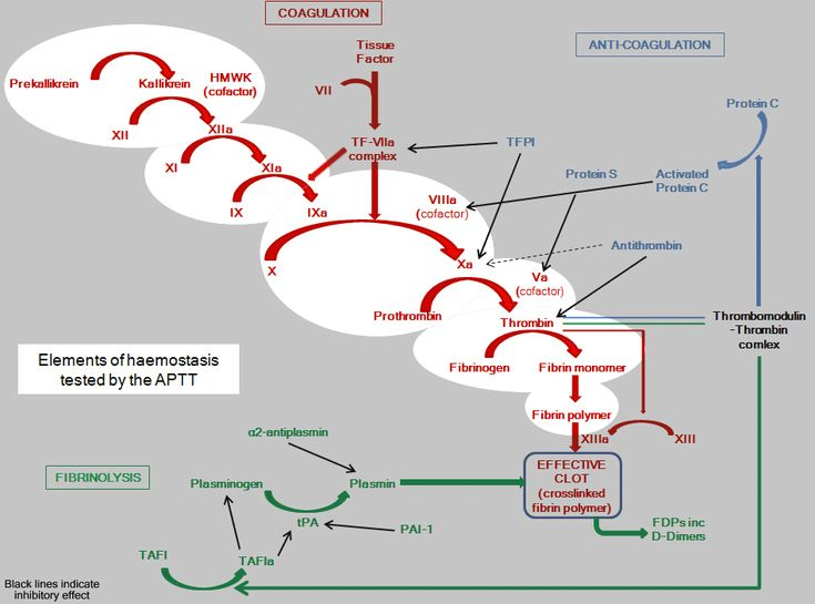 Activated Partial Thromboplastin Time [APTT]