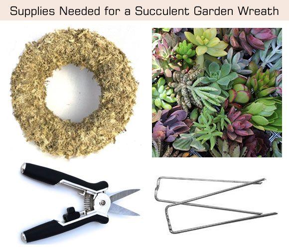 Succulent Garden Wreath Supplies Needed