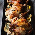 Herb-Roasted Chicken Recipe - Blue Ribbon Cookbook Recipe - House Beautiful