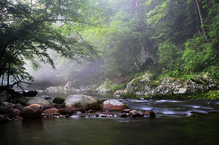 135 best gatlinburg city images on pinterest smoky for Fishing in gatlinburg tn