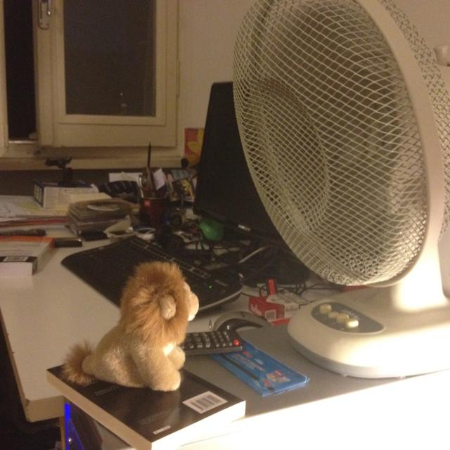 .@lionkingsergio dice che dalle sue parti faceva meno caldo...