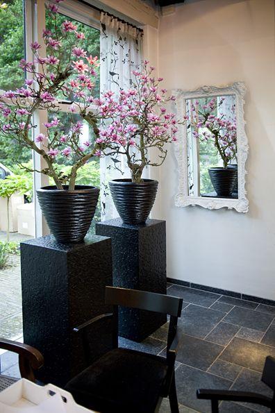 Kunst bloesem boom bloesembomen magnolia boom for Nep fruit waar te koop