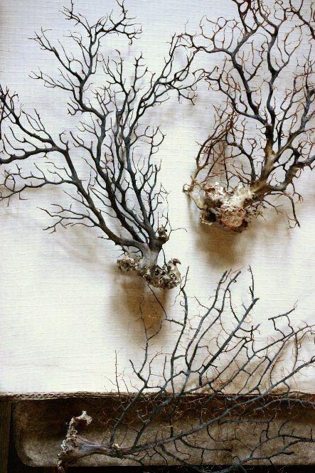Ветви деревьев на стенах и при желании - ствол от пола до потолка