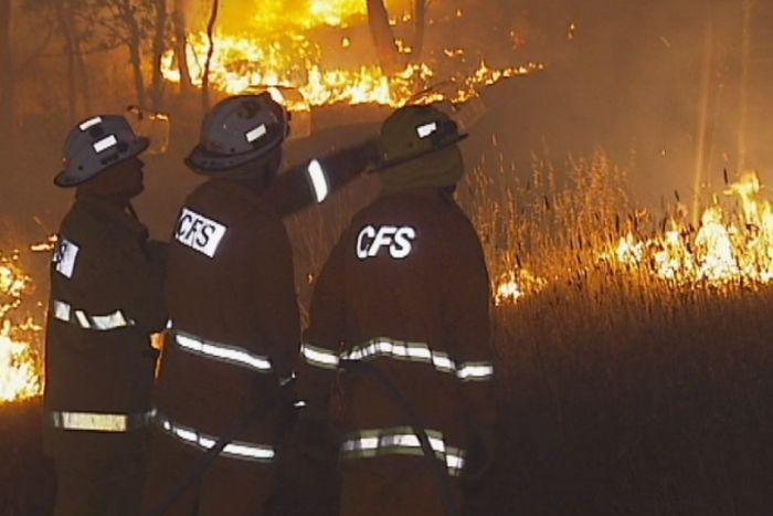 CFS firefighters