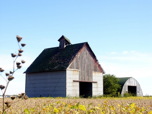 Illinois corn crib and machine shed . | OLD FARM BUILDINGS ...