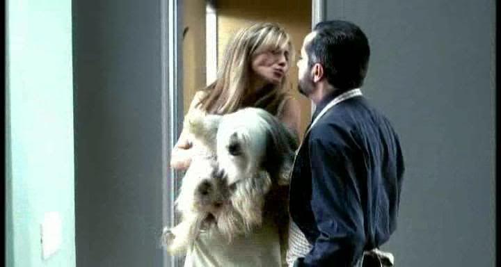 cine-seriefilo: Amores Perros. Tres historias, un accidente y la nueva cara del Cine Mexicano