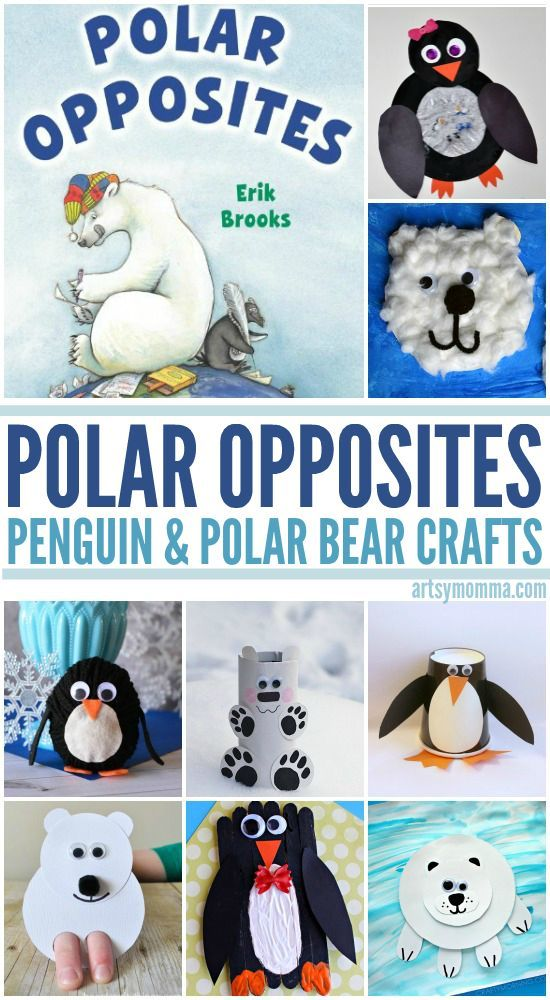 Polar Bear Activities and Books for Preschool!