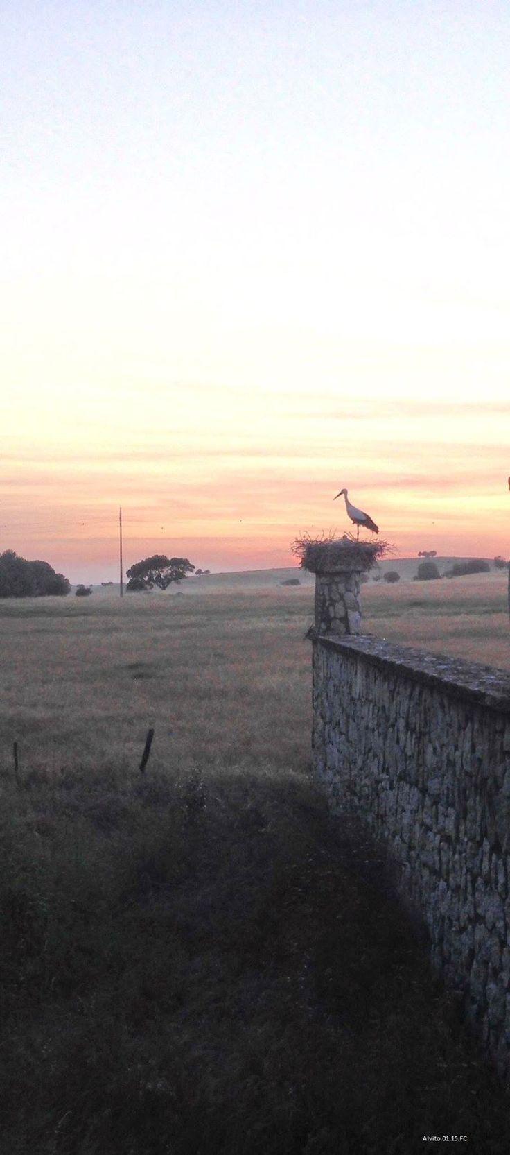 Unbelievable View | Pestana Pousada do Crato | Portugal | Paradisiac Places