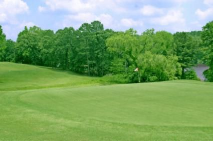 Tips for planting Zoysia
