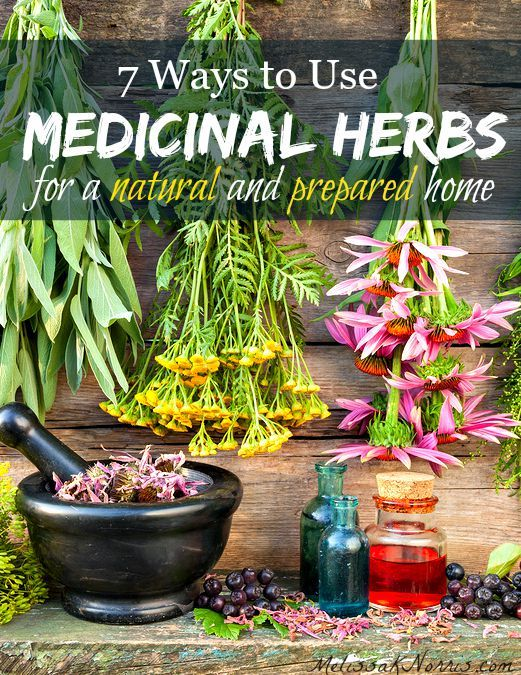7 ways to use medicinal herbs in your natural, preparedness, and survival medicine chest! Great list of herbs and the ways to prepare them for different ailments. Grab this now so you're ready before you need it!