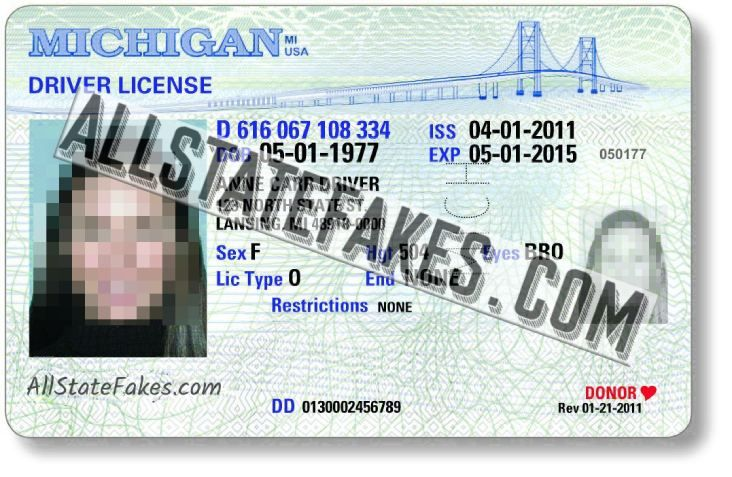 michigan drivers license phone number