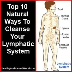 1000 Ideas About Leg Lymphedema On Pinterest Lymphatic