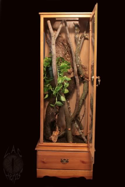 Gun cabinet vivarium - Gecko Resource Forums