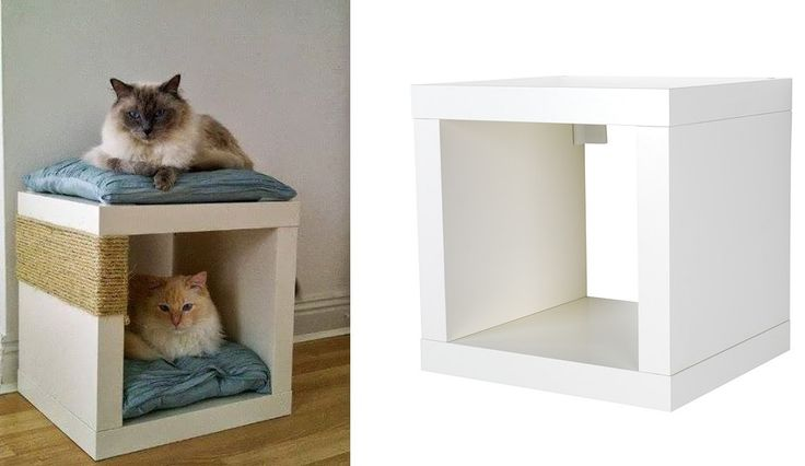 die besten 25 katzen zubeh r ideen auf pinterest kratzbaum zubeh r kratzm bel und kratzbaum. Black Bedroom Furniture Sets. Home Design Ideas