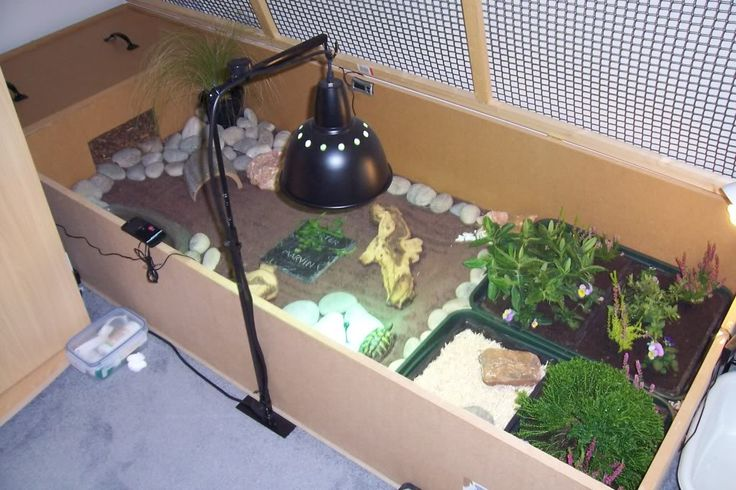 tortoise+enclosures+for+winter | INDOOR enclosures - Page 2 - Reptile Forums