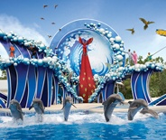 Sea World San Diego: San Diego, Seaworld Orlando, Favorite Places, Florida Exploring Orlando, Blue Horizon, Orlando Florida, Seaworld San, Sea World, Florida Travel