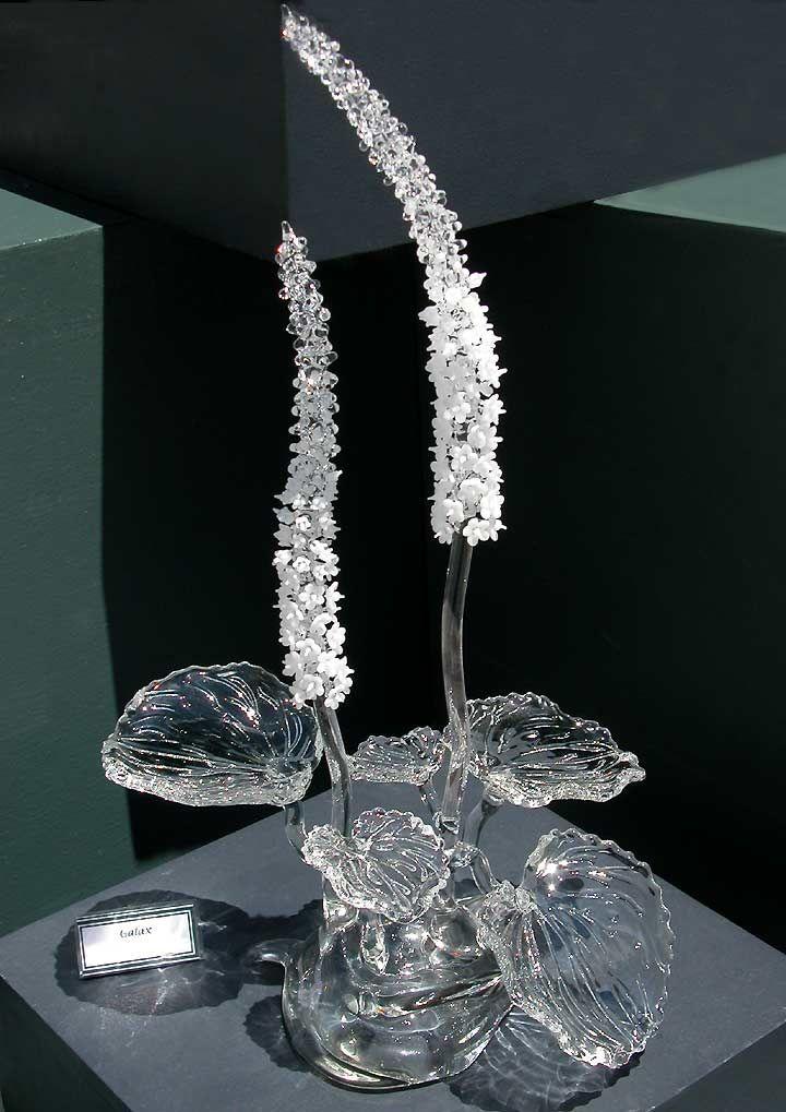 Рукодельница: Ронни Хьюз и его стеклянные цветы