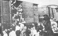 10ο Νηπιαγωγείο Τρίπολης (ολοήμερο τμήμα): Η 28η ΟΚΤΩΒΡΙΟΥ ΣΤΟ ΝΗΠΙΑΓΩΓΕΙΟ