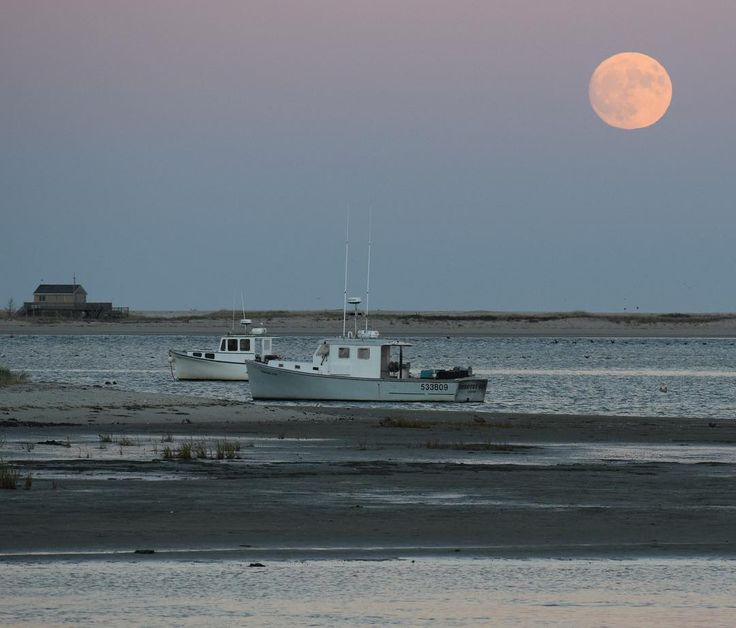 The super moon of November 2016 rising over Chatham Harbor. This is the closest the moon has been to the earth since 1948. The moon will not be this close again until 2034. Photo by Barry Desilets via Instagram.