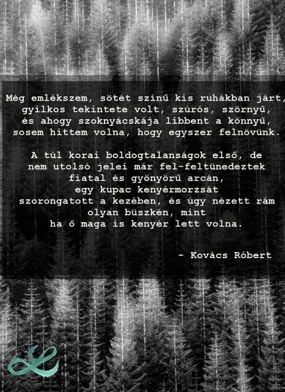 #kovácsróbert #vad #vers #költészet #emlék #boldogtalanság #boldogtalanság #hungarian #lendületmagazin #hungarianblogger #followme
