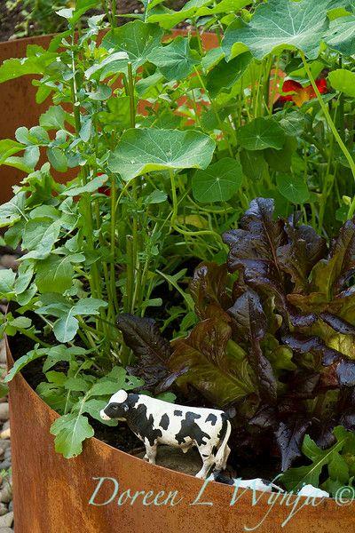 136 Best Images About Edible Garden Design On Pinterest | Gardens