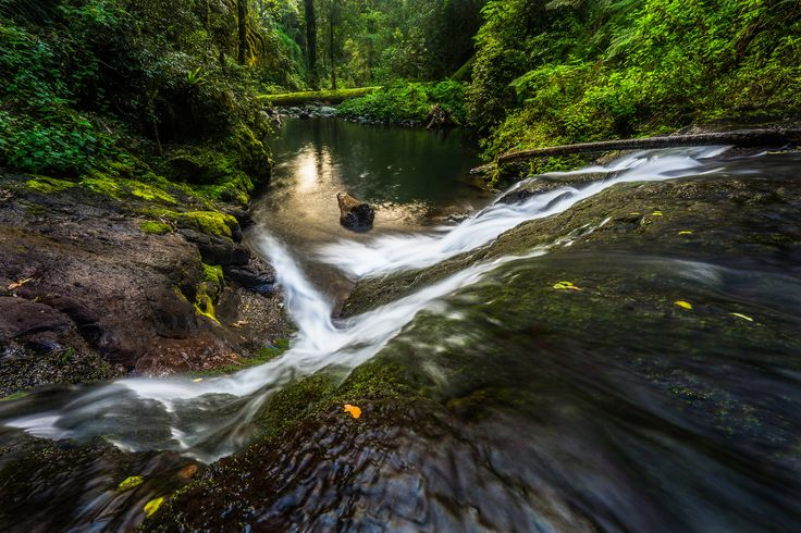 West Canungra Creek Falls | by Cameron Semple - http://highandwide.com.au