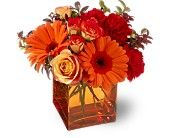 Teleflora's Sunrise Sunset Flowers, Teleflora's Sunrise Sunset Flower Bouquet - Teleflora.com