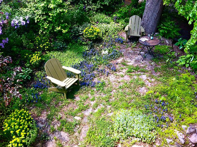 I look at this and think, sit and just listen to mother nature...: Gardens Ideas, Backyard Ideas, Adirondack Chairs, Wild Gardens, Gorgeous Gardens, Peace Gardens, Dreams Backyard, Fairyt Gardens, The Secret Gardens
