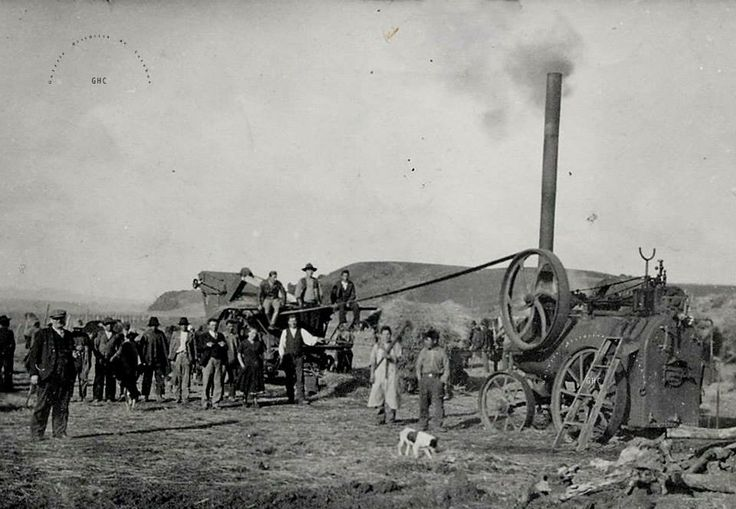 Galería Histórica de Carahue. Sociedad y Época: Trilla con #Locomovil Década del '50.-  #ghc #carahue #memoria #patrimoniofotografico