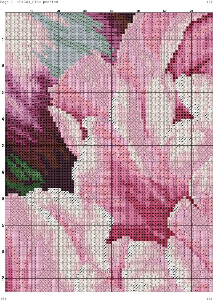 Pink peonies-001