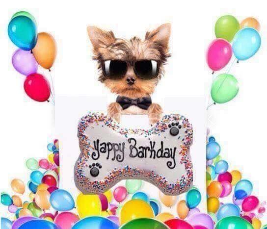 Happy Birthday Sparky