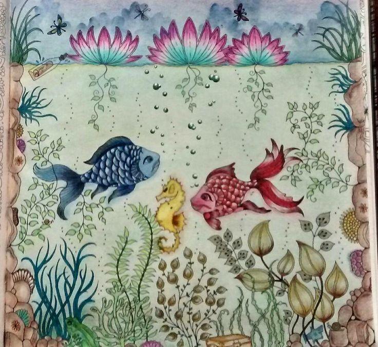 Fish Secret Garden Peixe Jardim Secreto Johanna Basford ColouringColoring BooksAdult