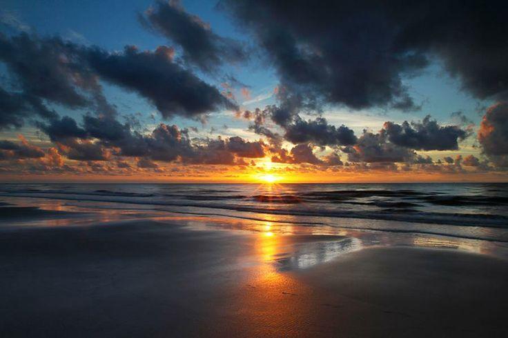Cape Tribulation, QLD, Australia
