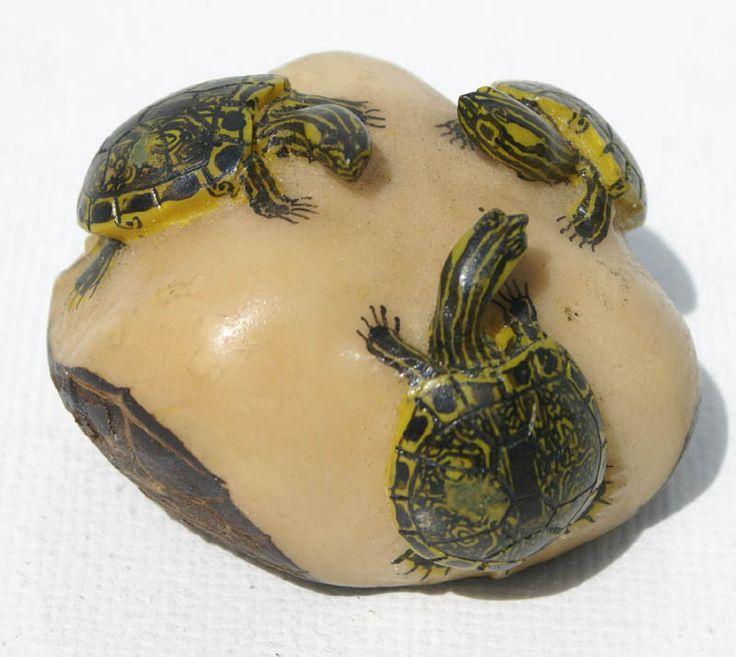 Tres tortugas tagua wounaan y embera artesanos darien bosque lluvioso de Panamá - €26.00 EUR en Vendoya
