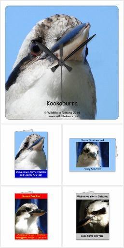 Gifts based on Kookaburras