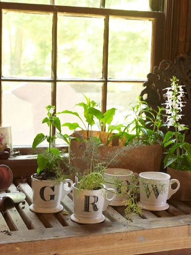 cups of growth, label old mugs with baking method?