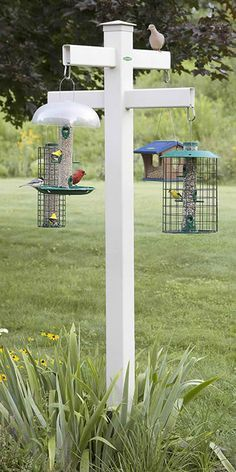 http://Duncraft.com: Duncraft Masterpiece Quad 4 x 4 Bird Feeder Post
